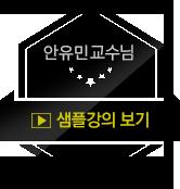 안유민 교수님 샘플강의
